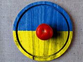 The Ukrainian flag — Stock Photo