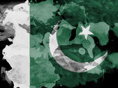 The Pakistani flag — Foto Stock
