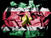 Surinamese flag painted on pieces of torn paper on black background — Stock Photo
