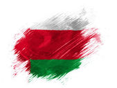 Oman flag painted with brush on white background — Stock Photo