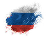 The Slovenia flag — Stock Photo