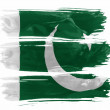 Pakistani flag — Stock Photo #23430558