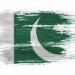 The Pakistani flag — Stock Photo