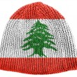 Lebanese flag — Stock Photo #23431190