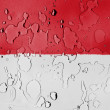 The Indonesian flag - Stock Photo