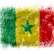 The Senegal flag - Lizenzfreies Foto