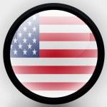 The USA flag — Stock Photo #23434766