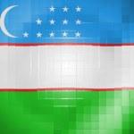 Uzbekistan flag on wavy plastic surface — Stock Photo #23434786