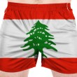 Lebanese flag — Stock Photo #23434964