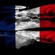 The French flag — Stock Photo #23434994