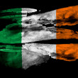 Irish flag — Photo #23435250