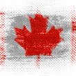 The Canadian flag - Stock Photo