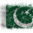 Pakistani flag — Foto Stock #23435966