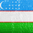 Uzbekistan flag  painted on bubblewrap — Stock Photo