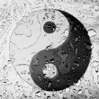 Ying Yang sign painted on covered with water drops — Stock Photo #23437586