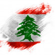 Lebanese flag — Stock Photo #23438292