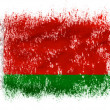 The Belarusian flag - Foto de Stock
