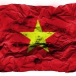 The Vietnamese flag - Stock Photo