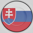 The Slovakia flag — Stockfoto