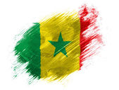 The Senegal flag — Stok fotoğraf