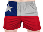 The Chile flag — Photo
