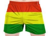 The Bolivian flag — Stock Photo