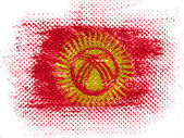 Kyrgyzstan flag on dotted surface — Stock Photo