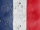 The French flag — Stock fotografie