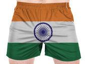 Le drapeau indien — Photo