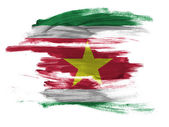 Surinamese flag painted on white surface — Stock Photo