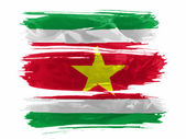 Surinamesa bandera pintada con tres trazos de pintura en blanco — Foto de Stock