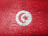 A bandeira de tunis — Fotografia Stock