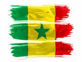 セネガルの旗 — ストック写真