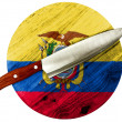 Ecuador flag — Stock Photo #23441488