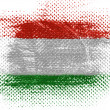 The Hungarian flag - Stock Photo