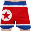 Stock Photo: The North Korea flag