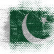 Pakistani flag — Foto Stock #23445292