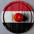 The Egyptian flag - Stock Photo
