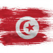 The Tunis flag - Stock Photo