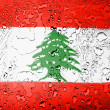 Lebanese flag — Stock Photo #23445418