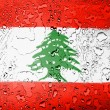 The Lebanese flag - Stock Photo