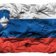 The Slovenia flag - Stock Photo