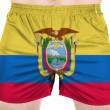 Ecuador flag  painted on sport shirts - Stock Photo