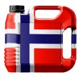 The Norwegian flag — Foto Stock