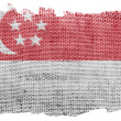 The Singapore flag — Stock Photo