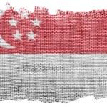 The Singapore flag — Stock Photo #23449412
