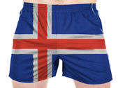 The Icelandic flag — Photo