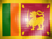 Sri Lanka flag on wavy plastic surface — Stock Photo