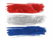 The Netherlands flag — Foto de Stock