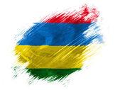 Mauritania flag painted with brush on white background — Stock Photo